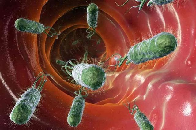 Vi khuẩn Hp làm tăng nguy cơ ung thư dạ dày.