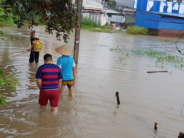 Hiện tượng chưa từng xảy ra ở phường Đằng Hải, quận Hải An mấy chục năm qua