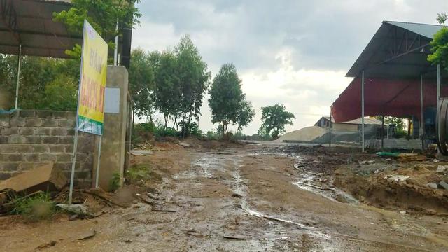 Hàng loạt nhà xưởng mọc lên trên đất được cấp cho Nông trường Tam Đảo.