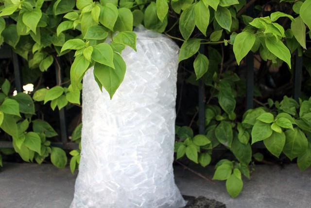 Mỗi túi đá viên lớn có trọng lượng 5kg, được bán với giá buôn từ 6.000-8.000 đồng/túi.