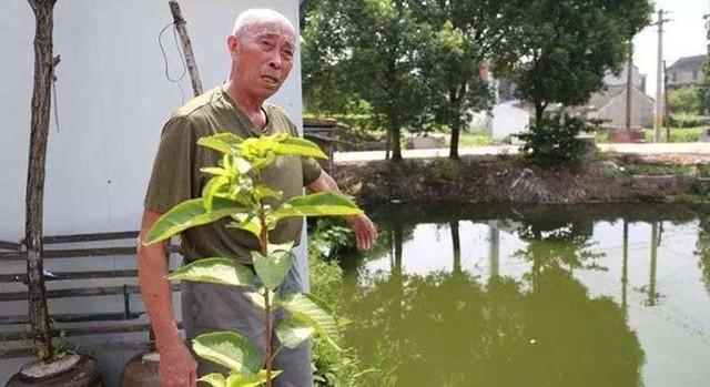 Ông Xu chỉ ra con sông cạnh nhà, nơi ông cứu cậu bé và bố cậu bé cách đây 30 năm. Ảnh: Shanghaiist.