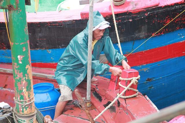 Ngư dân neo tàu tránh trú bão