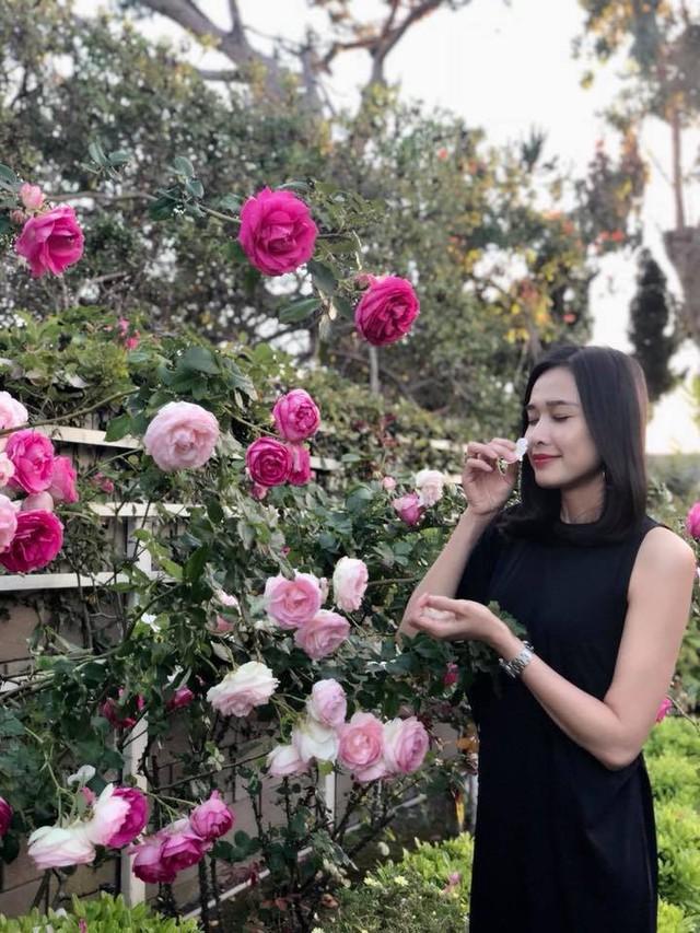 Trên trang cá nhân, người đẹp cập nhật cuộc sống của mình tại Mỹ vô cùng bình yên và thân thuộc, với những góc nhỏ rực rỡ hoa hồng cùng khu vườn đủ loại cây trái.