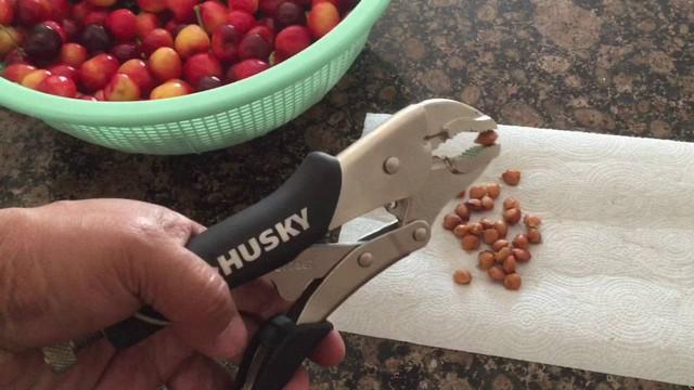 Các loại hạt được lấy ra từ quả, rửa sạch và cất trong tủ lạnh.