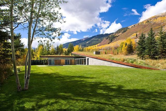 Mái nhà xanh cho phép ngôi nhà hòa vào cảnh quan xung quanh.