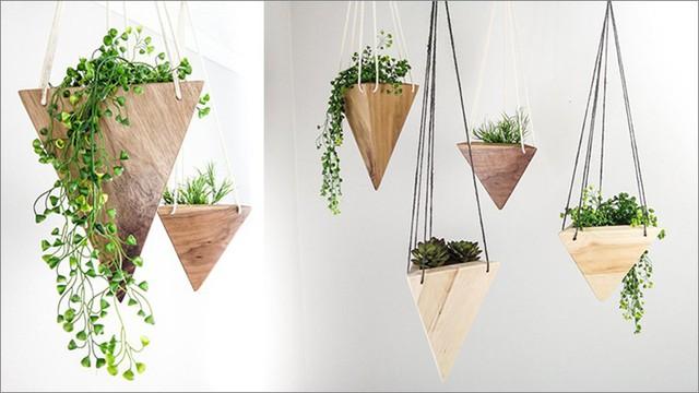 Bên cạnh những chậu cây bằng nhựa, sứ quen thuộc thì những mẫu chậu trồng cây bằng gỗ như thế này cũng khiến bạn không thể bỏ qua.