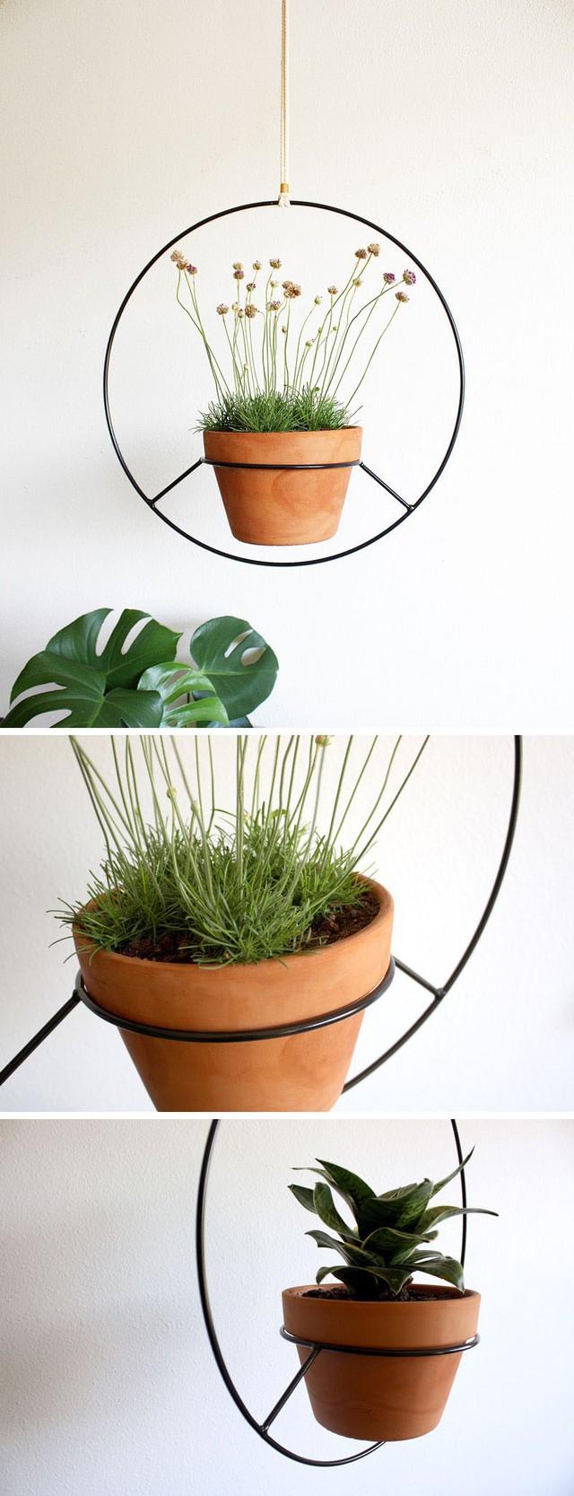 Sự kết hợp giữa mẫu chậu trồng cây quen thuộc với khung khung treo tường lại đem đến hiệu quả thẩm mỹ khiến bạn không khỏi bất ngờ.
