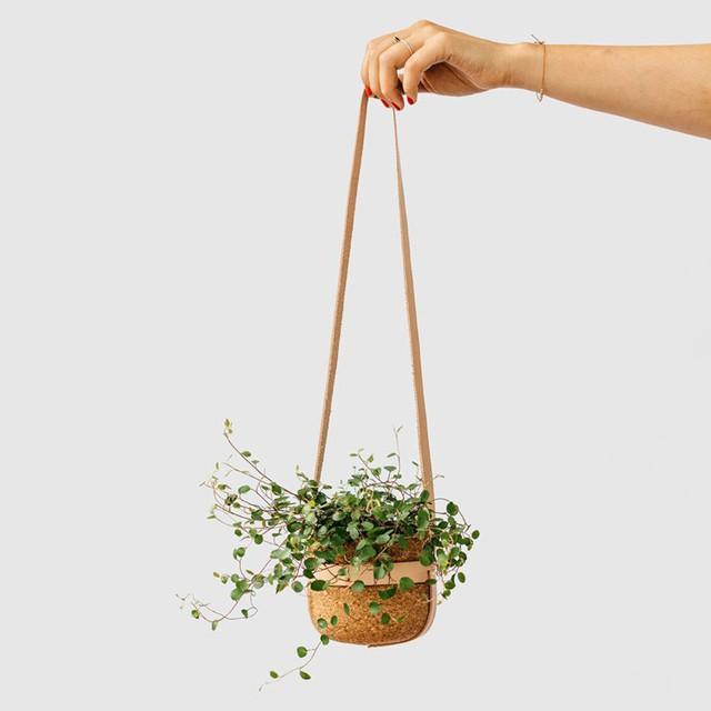 Với ai muốn lựa chọn một mẫu chậu trồng cây trong nhà có nguồn gốc thân thiện với thiên nhiên thì đây chính là một gợi ý đáng để bạn cân nhắc. Mẫu chậu cây được sản xuất từ nút chai kết hợp với dây treo bằng da tự nhiên.