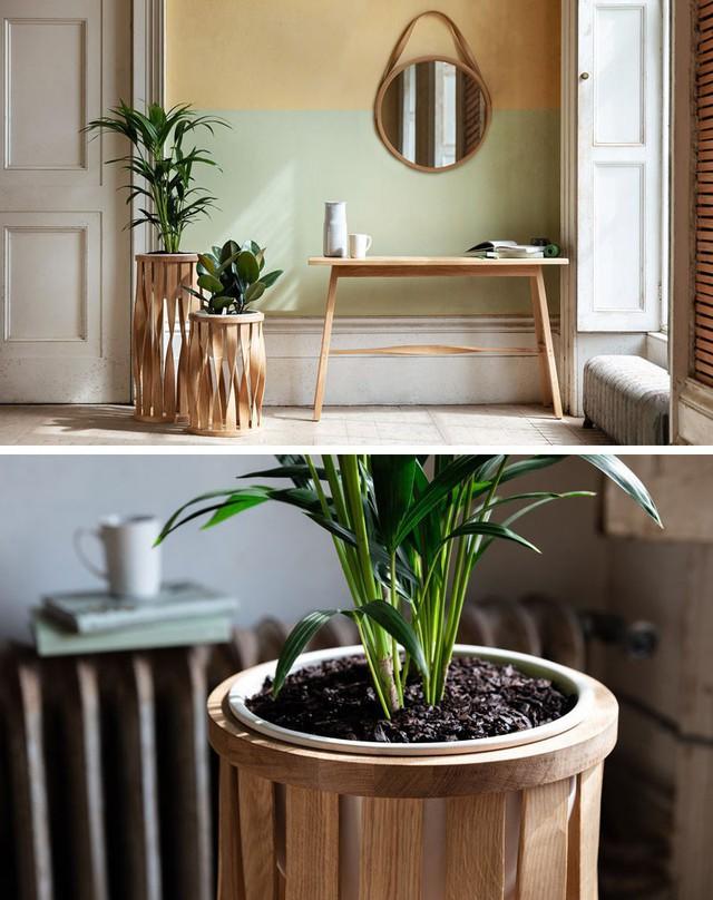 Thay vì chỉ sử dụng những chậu trồng cây trong nhà bằng nhựa đơn sắc quen thuộc các gia đình còn sắp thêm áo khoác cho những chậu trồng cây trong nhà để tạo điểm nhấn ấn tượng hơn.
