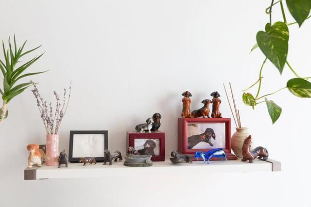 Góc kệ treo tường đặt đồ lưu niệm kết hợp với những mảng xanh hoa cỏ cho không gian thêm cuốn hút.