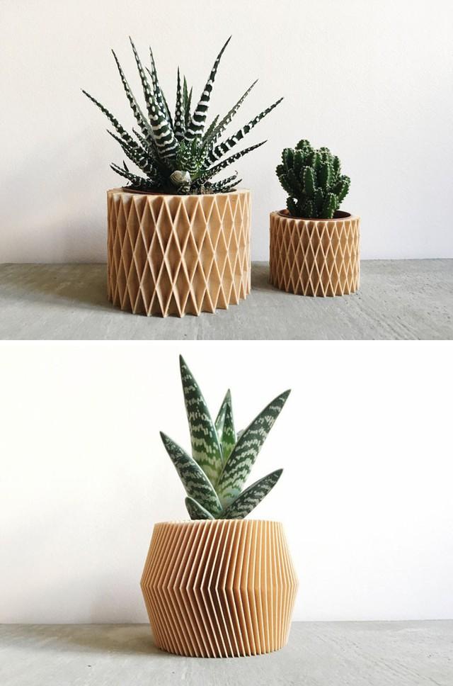 Những chậu cây độc đáo cũng khiến cho việc trồng cây tại nhà của bạn trở nên thú vị hơn nhiều.