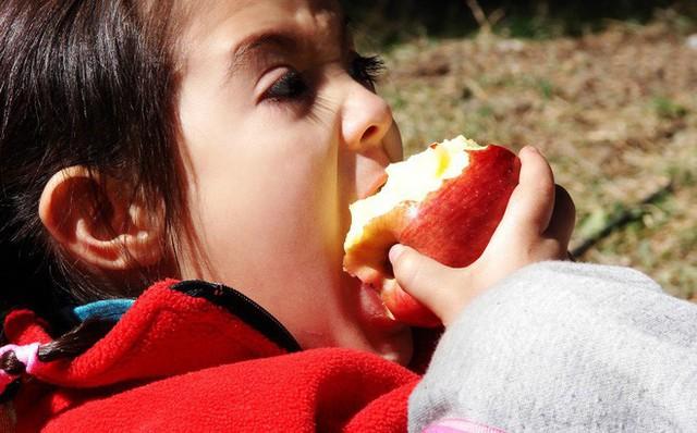 Vỏ táo chứa 8,4 mg Vitamin C và 98 IU Vitamin A.