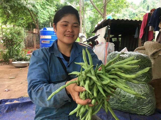 Chị Dâng vui mừng, khi năm nay 1ha đậu cô ve của gia đình cho trĩu quả.