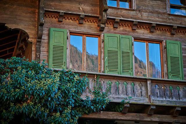 Ngôi nhà được xây dựng hoàn toàn bằng gỗ, chất liệu đủ để mọi người sống trong nhà đều cảm giác như được hoà mình tuyệt đối với thiên nhiên cây cỏ.