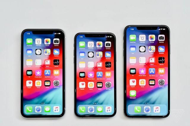 Bộ 3 iPhone mới trình làng của Apple (từ trái qua): iPhone XS, iPhone XR và iPhone XS Max