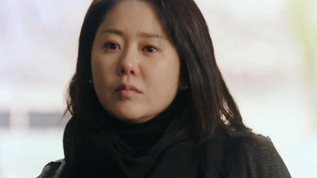 Gia đình tài phiệt luôn chèn ép Go Hyun Jung bởi họ cho rằng xuất thân thấp hèn của cô thật không môn đăng hộ đối. Mang tiếng làm dâu hào môn song nữ diễn viên chỉ như người giúp việc trong nhà.