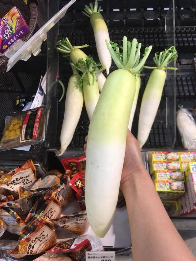 Củ cải Nhật đang được giới nhà giàu Việt chuộng mua về ăn dù giá lên tới 250.000 đồng/kg (ảnh: Khuc Ngoc Anh)