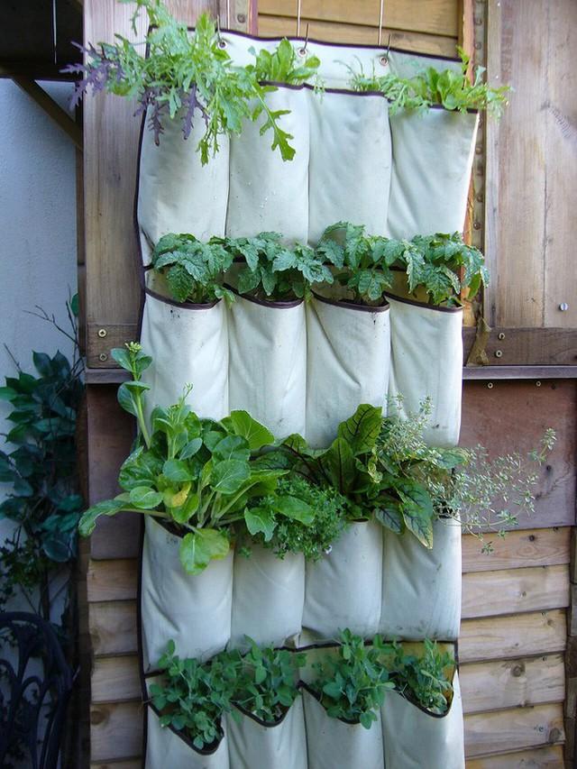 5. Bạn sẽ từng suy nghĩ đến việc trồng cây trong những túi vải treo trên thành gỗ chưa. Nếu chưa thì bạn có thể nhìn vào đây và bắt đầu thực hiện từ ngày hôm nay nhé. Hiệu quả và chất lượng không tồi đâu.