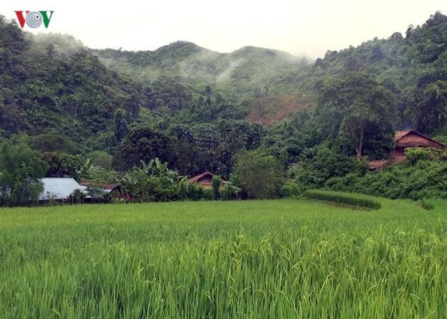 Bản Huổi Hạ là một trong những bản xa và khó khăn nhất của xã Na Sang, huyện Mường Chà, tỉnh Điện Biên. Cả bản có 75 hộ với khoảng 500 nhân khẩu.