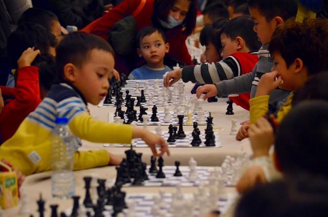 Dù các kỳ thủ đều chỉ trong độ tuổi từ 3-5 tuổi nhưng đều thể hiện tinh thần thi đấu đầy quyết tâm