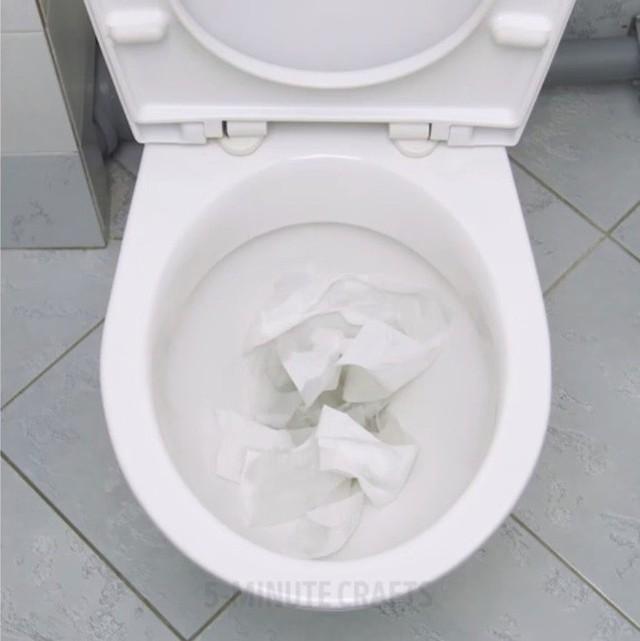 Rất nhiều trường hợp đã dở khóc dở cười khi bồn cầu bị nghẹt bởi những tờ giấy vệ sinh tưởng như mong manh đó. (Ảnh: 5-minute crafts)