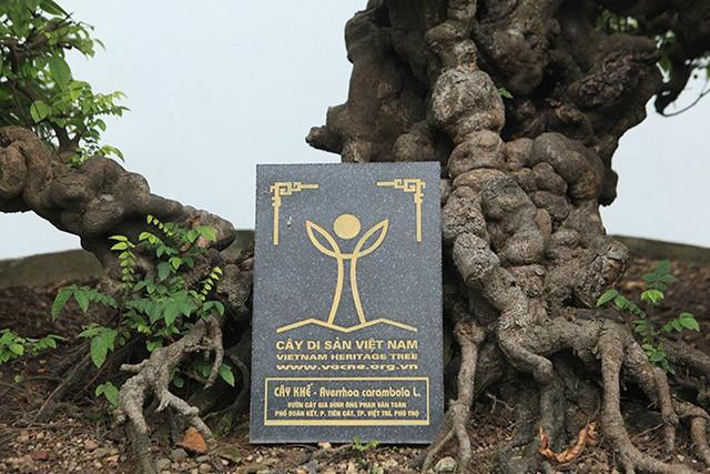 Năm 2015, vườn nhà anh Toàn được công nhận là vườn cây cảnh di sản đầu tiên tại Việt Nam