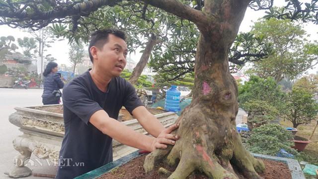 Anh Toản đang chăm sóc cây tùng kiểng của gia đình.