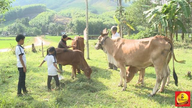 Đàn bò của gia đình anh Nguyễn Ngọc Ánh đã được bốn con