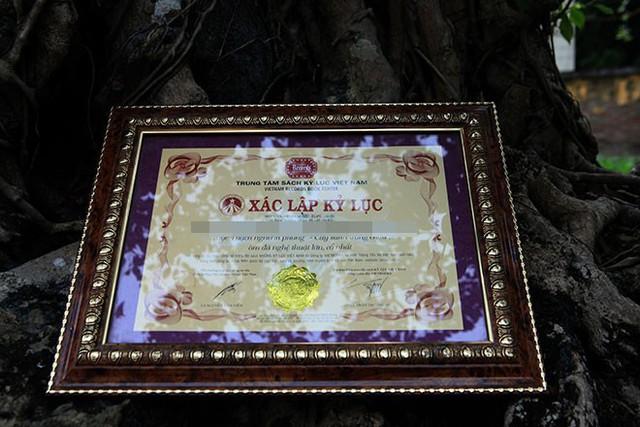 Tác phẩm này đã được tổ chức Kỷ lục châu Á công nhận là Cây sanh ôn đá nghệ thuật lớn, cổ nhất châu Á vào ngày 18/12/ 2010.