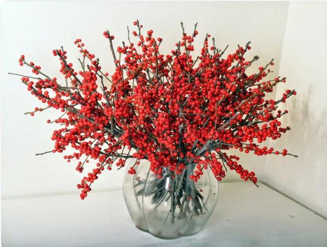 Hoa đào đông mang sắc đỏ may mắn được nhiều người lựa chọn
