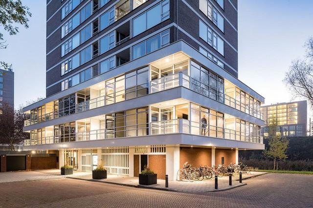 Biến những căn hộ cũ thành những tòa nhà sang trọng với thiết kế không gian thoáng đãng.