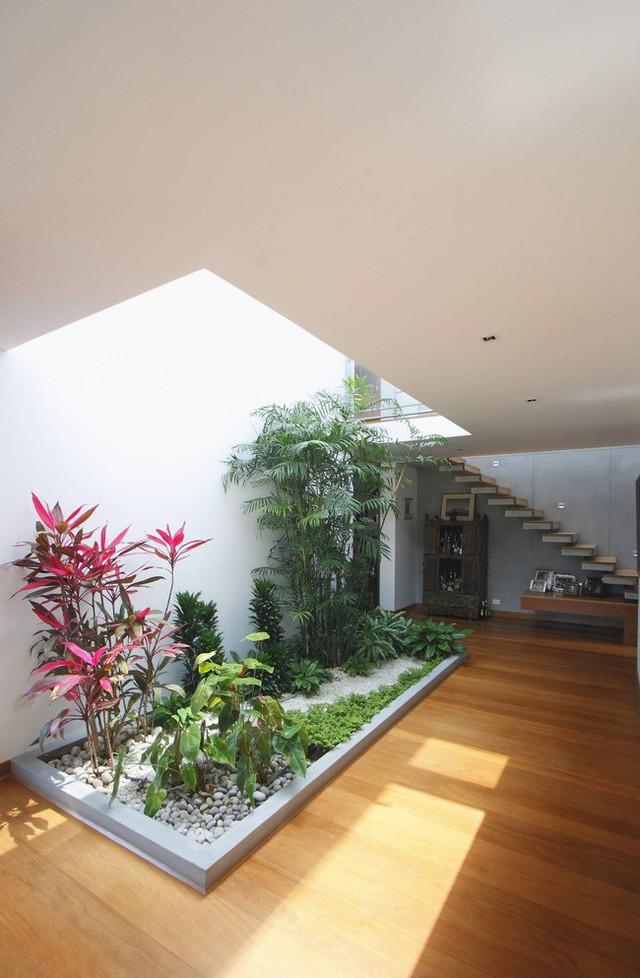 Khoảng cây xanh được bố trí hợp lý để lấy thoáng và sáng cho ngôi nhà.
