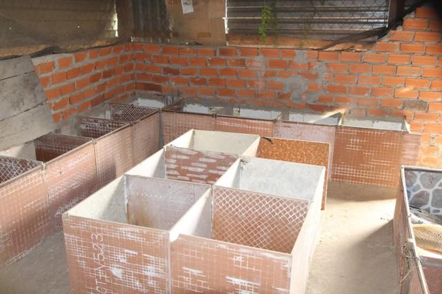 khu vực chuồng nuôi dúi được anh Thạch thiết kế hết sức đơn giản và dễ làm