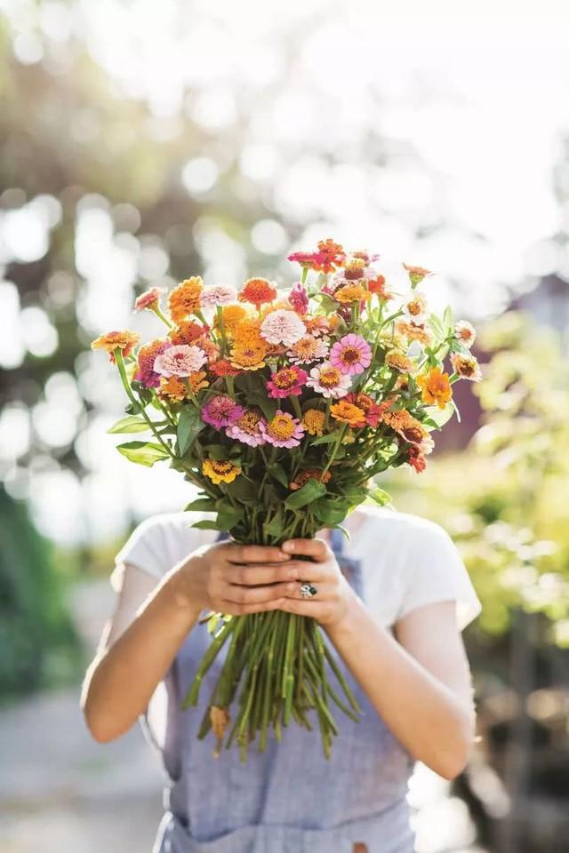 Niềm hạnh phúc khi thu hoạch hoa, sau những vất vả và mong chờ.