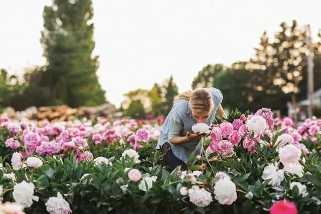 Mỗi góc hoa đều thấp thoáng bàn tay chăm chỉ và sự nỗ lực của các thành viên trong gia đình.