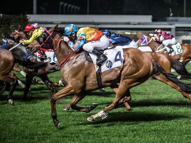 Một cách giải trí khác của nhà giàu Hong Kong là cá cược đua ngựa. Chỉ riêng mùa giải 2017-2018, đua ngựa Hong Kong đã thu về 15,8 tỷ USD tiền cược.