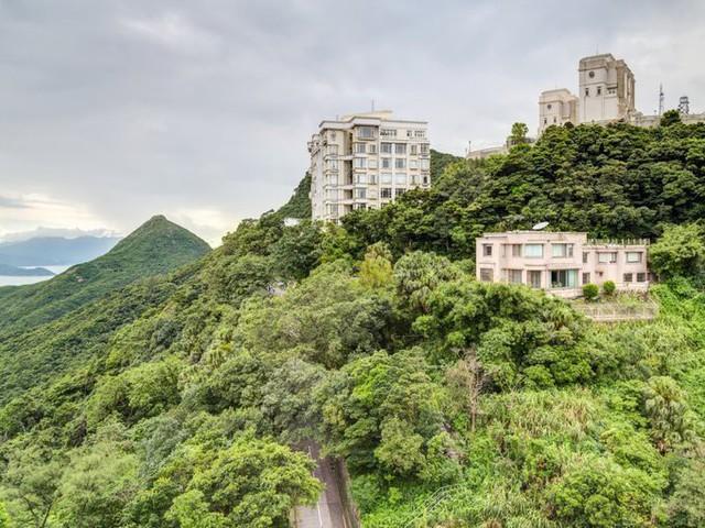 Trong khi những người thu nhập thấp trả 500.000 USD để mua các căn hộ nano, căn hộ siêu nhỏ hay thậm chí sống trong nhà lồng sắt, nhà quan tài thì giới siêu giàu chủ yếu cư ngụ trong biệt thự ngoại ô, nhất là khu The Peak, nơi cao nhất của Hong Kong.