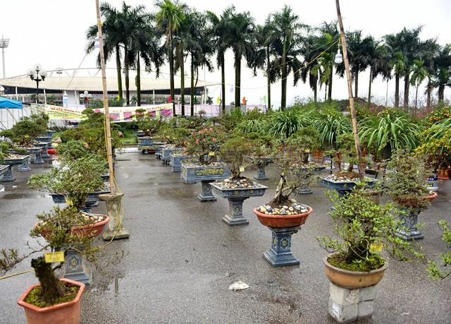 Tại Hội chợ Tết trước sân vận động Mỹ Đình, nhiều ngày nay xuất hiện rất nhiều tác phẩm về sinh vật cảnh. Tuy nhiên, tại gian hàng trưng bày đỗ quyên của ông Lê Văn Minh (Lào Cai) khiến nhiều người chú ý hơn cả.
