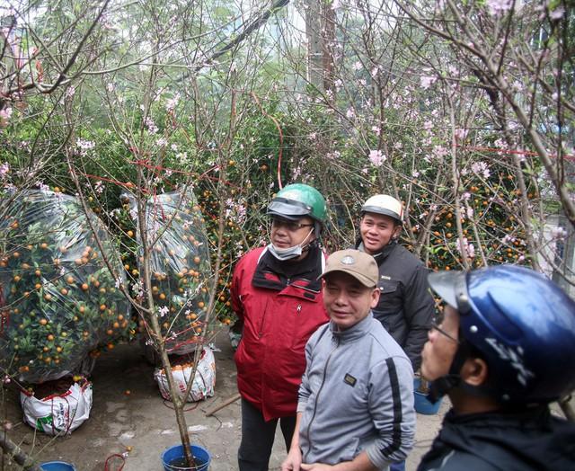 Những điểm bán đào, quất tại đường Lạc Long Quân luôn trong tình trạng đông kín khách lúc trưa ngày 27/1.