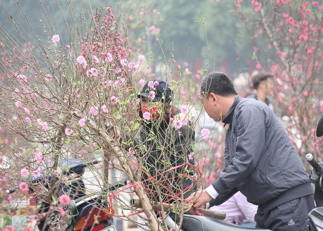 Tại khu vực vườn hoa đường Lạc Long Quân, hàng trăm người mua bán nhộn nhịp khiến không khí Tết đang đến rất gần.
