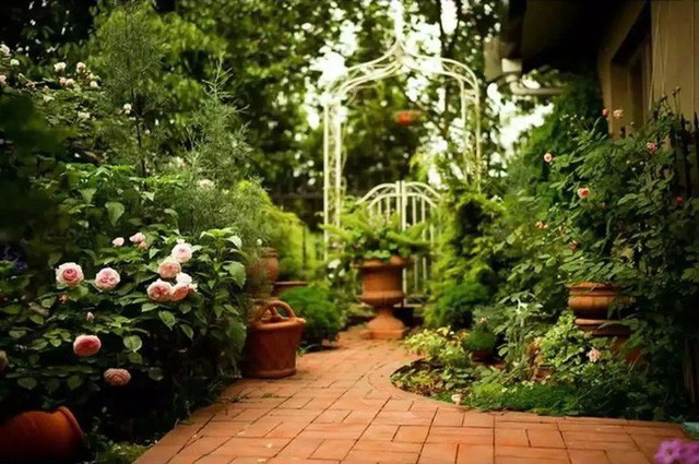 Lối đi dạo ngập tràn hương sắc của hoa.