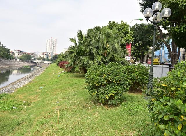 Khu vực vườn hoa dọc bờ sông Tô Lịch cũng sẽ bị san phẳng để phục vụ mở rộng đường.