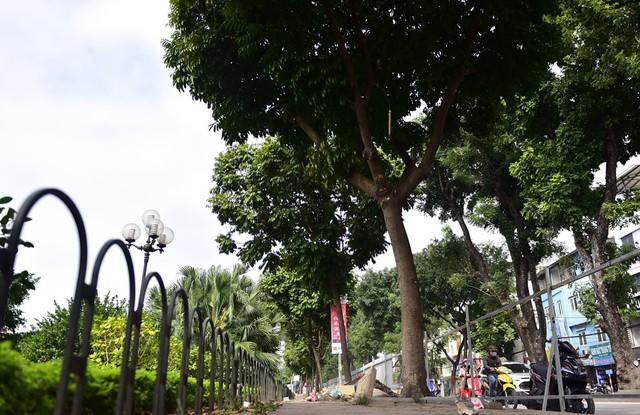 Đường Láng từ đoạn Cầu Giấy - Ngã Tư Sở có chiều dài khoảng 4km và dọc phía bên phải, sát bờ sông Tô Lịch sẽ triển khai mở rộng đường.