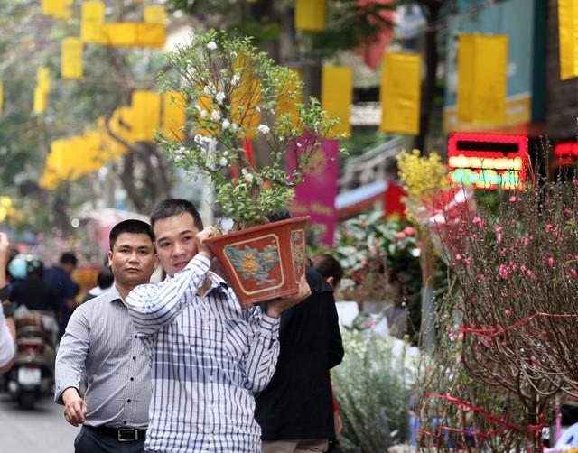Hai người đàn ông vui mừng khi mua được một chậu nhất chi mai với giá phải chăng.