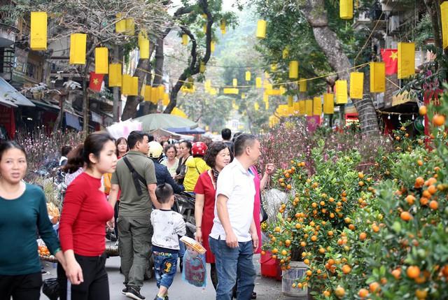 Chợ hoa cổ Hàng Lược là một trong những chợ trong trung tâm Hà Nội thời xa xưa và chỉ họp duy nhất 1 lần vào sát Tết và chủ yếu buôn bán các loại cây cảnh, hoa Tết xứ Kinh kỳ.
