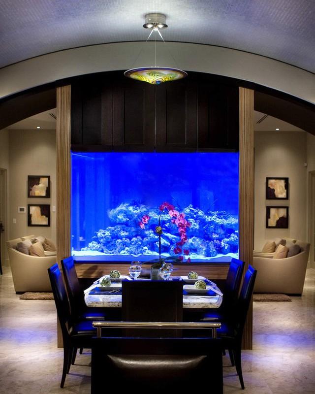 6. Những đèn chiếu sáng ne-on màu xanh dương đang chứng tỏ rằng mình là sự lựa chọn hoàn hảo đối với những bể cá, giống như thế này.
