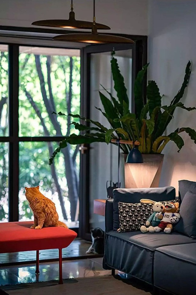 Góc cửa sổ với những tông màu cá tính nhất, kèm theo ánh sáng vàng cho không gian thêm đầm ấm.