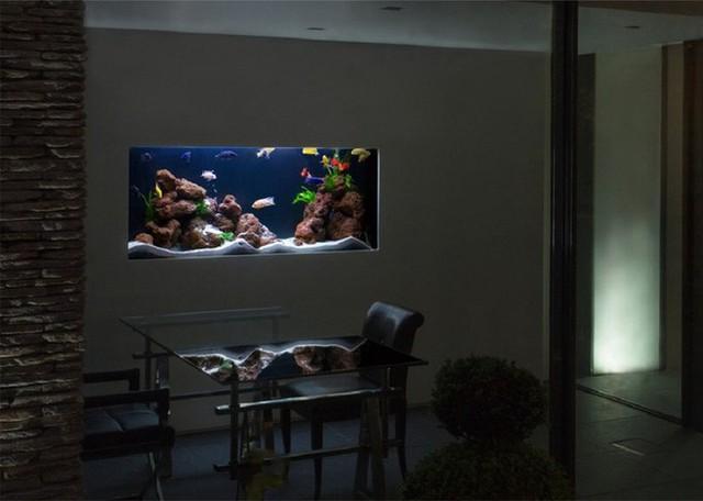 10. Bạn cứ thử tượng tượng cảnh ngôi nhà bạn chìm trong màn đêm đen tối, chỉ có mỗi bể cá với các chú cá bơi tung tăng lại còn sáng lạng lên như thế này, thật tuyệt vời đúng không.
