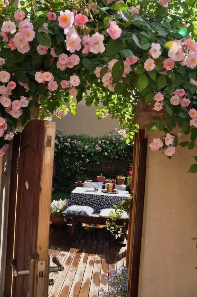 Cổng vào nhà với vòm hoa đẹp như chuyện cổ tích.