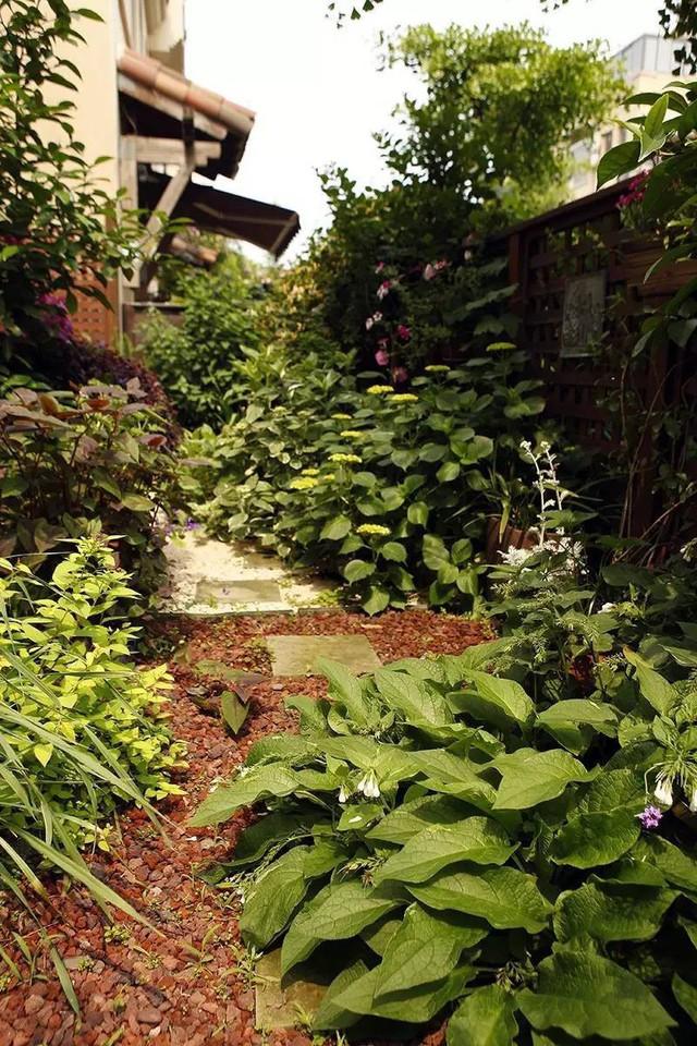 Lối vào vườn với từng bậc đá và sỏi đẹp mắt.